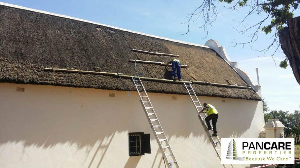 Thatch Roofing Project, Stellenbosch